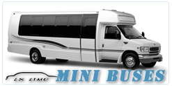 Columbus Mini Bus rental